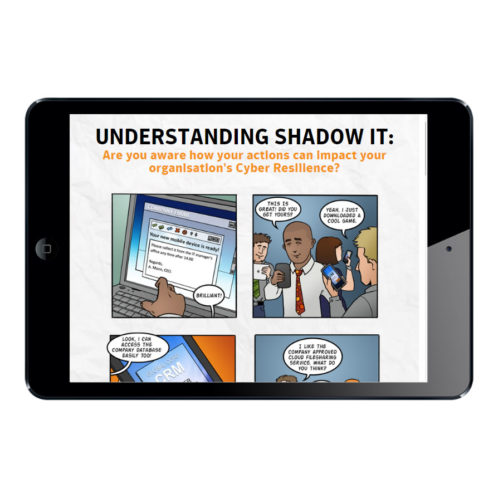 Shadow IT End user
