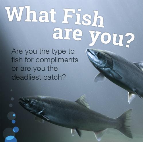 Fishbrain-Quiz